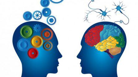 La Programación Neurolingüística y las ventas
