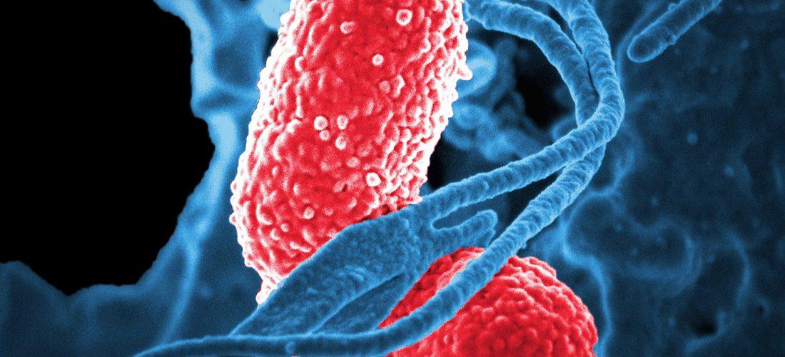 Inmersión en nanociencia y nanotecnología