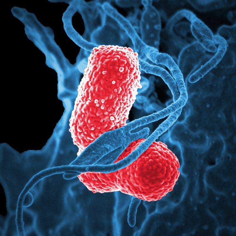 Nanozientzian  eta  nanoteknologian  murgiltzen