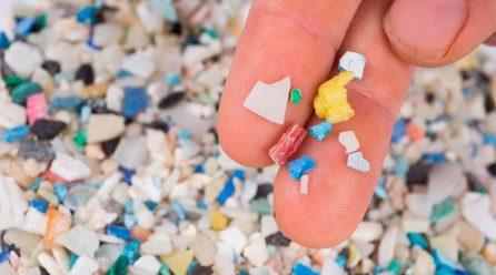 Plásticos y microplásticos en el mar