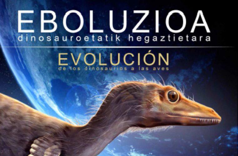 Evolución: de los dinosaurios a las aves