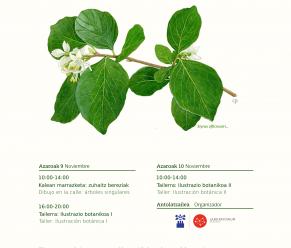 Ilustrazio  botanikoa  –  Bergaran  Artea  eta  Zientzia  uztartuz,  IV.  edizioa
